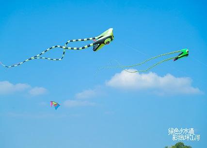 2021坪山河风筝节活动现场图片7